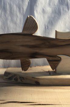 Drewniane trofeum wędkarskie – Amur biały