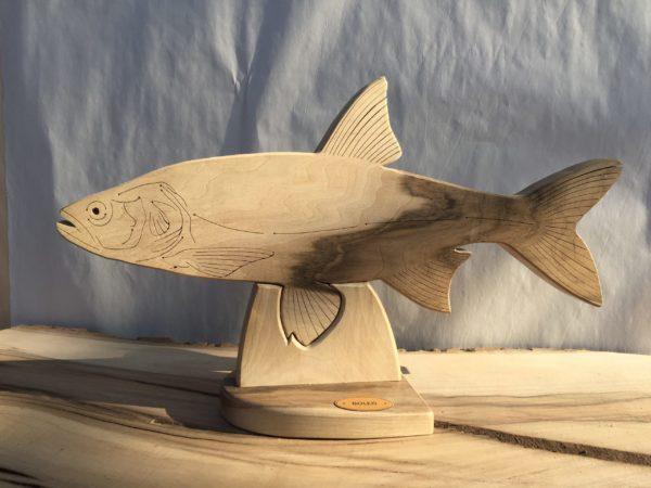 Drewniane trofeum wędkarskie – Boleń
